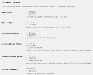 Easy Updates Manager Configuratie Automatic Updates