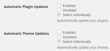 Individuele Plugins en Themes Update Options