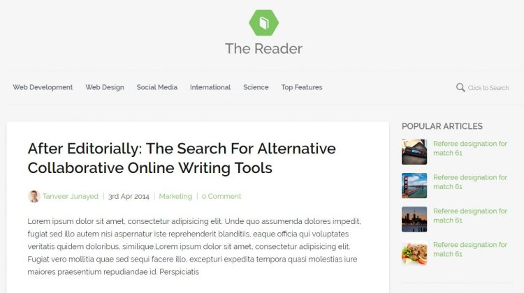 The Reader – Een Minimal Blog Thema voor WordPress