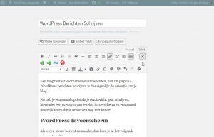 WordPress Afleidingsvrije Modus